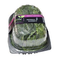 Espinaca-Fresh-Cut-Pote-500-g-Gourmet