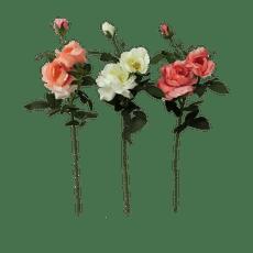 Rosa-Krea-65-cm-1-40633549
